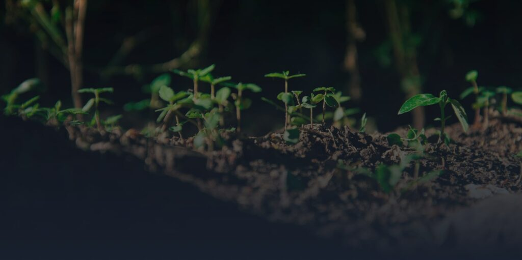 Plants Growth Monitoring Application preview